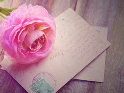 contact carte poste rose